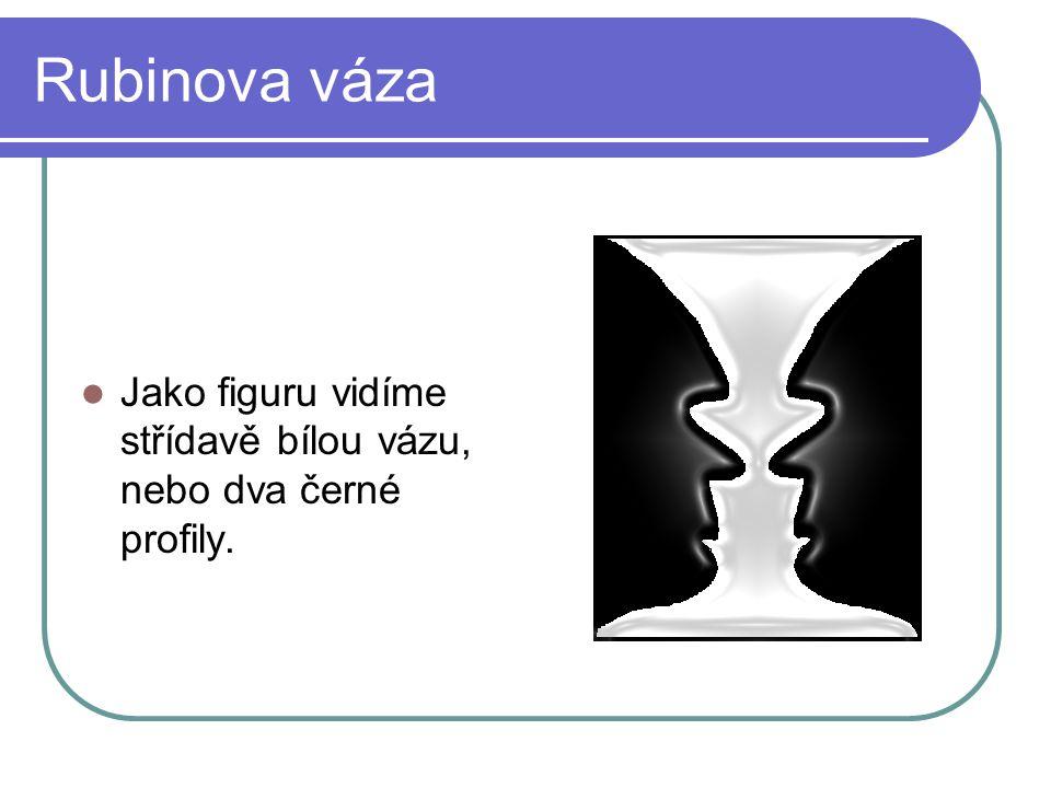 Rubinova váza Jako figuru vidíme střídavě bílou vázu, nebo dva černé profily.