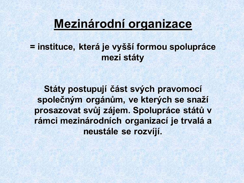 Zdroje http://www.un.org/en/ http://www.osn.cz/ http://www.nato.int/cps/en/natolive/index.htm http://www.natoaktual.cz/ http://www.amnesty.cz/ http://www.g7.utoronto.ca/ http://www.wto.org/ http://www.osn.cz/system-osn/specializovane-agentury/?i=134 http://www.oecd.org/ http://www.opec.org/home/ http://www.wikipedia.org http://www.google.com - obrázkyhttp://www.google.com