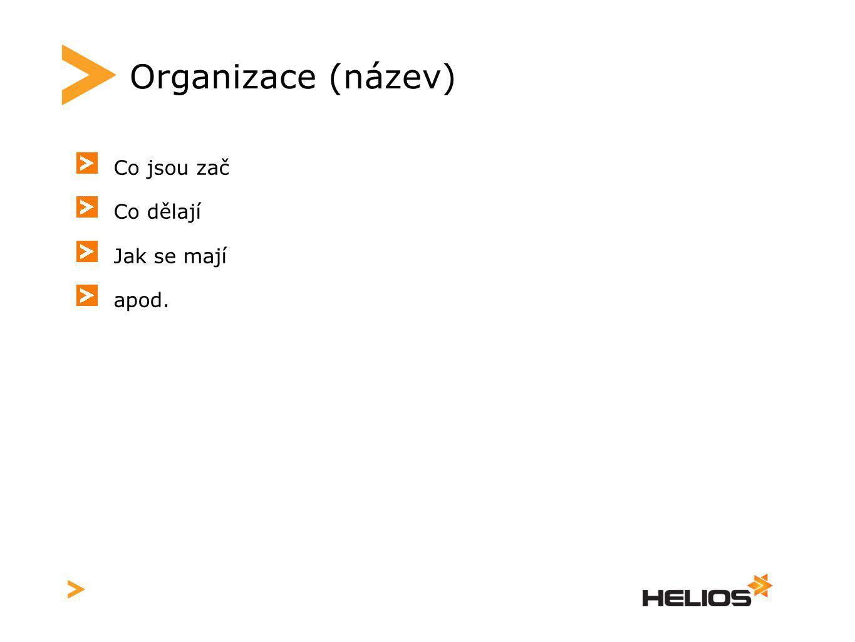 Organizace (název) Co jsou zač Co dělají Jak se mají apod.
