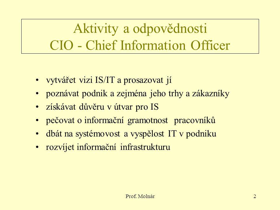 Prof. Molnár2 Aktivity a odpovědnosti CIO - Chief Information Officer vytvářet vizi IS/IT a prosazovat jí poznávat podnik a zejména jeho trhy a zákazn