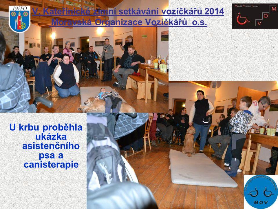 V. Kateřinické zimní setkávání vozíčkářů 2014 Moravská Organizace Vozíčkářů o.s. U krbu proběhla ukázka asistenčního psa a canisterapie