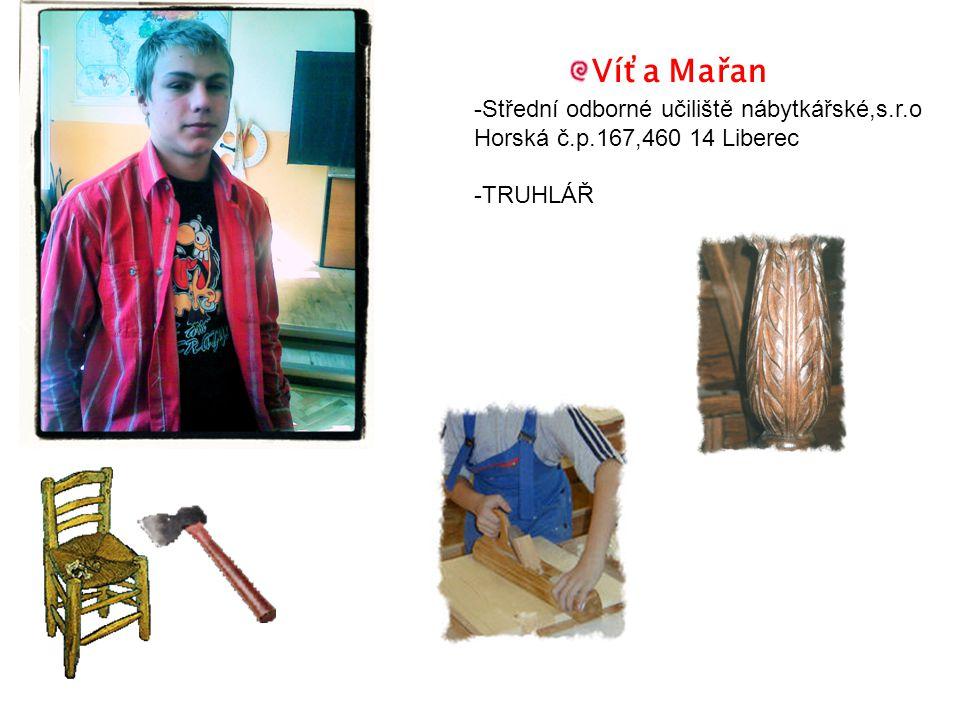 Víťa Mařan -Střední odborné učiliště nábytkářské,s.r.o Horská č.p.167,460 14 Liberec -TRUHLÁŘ