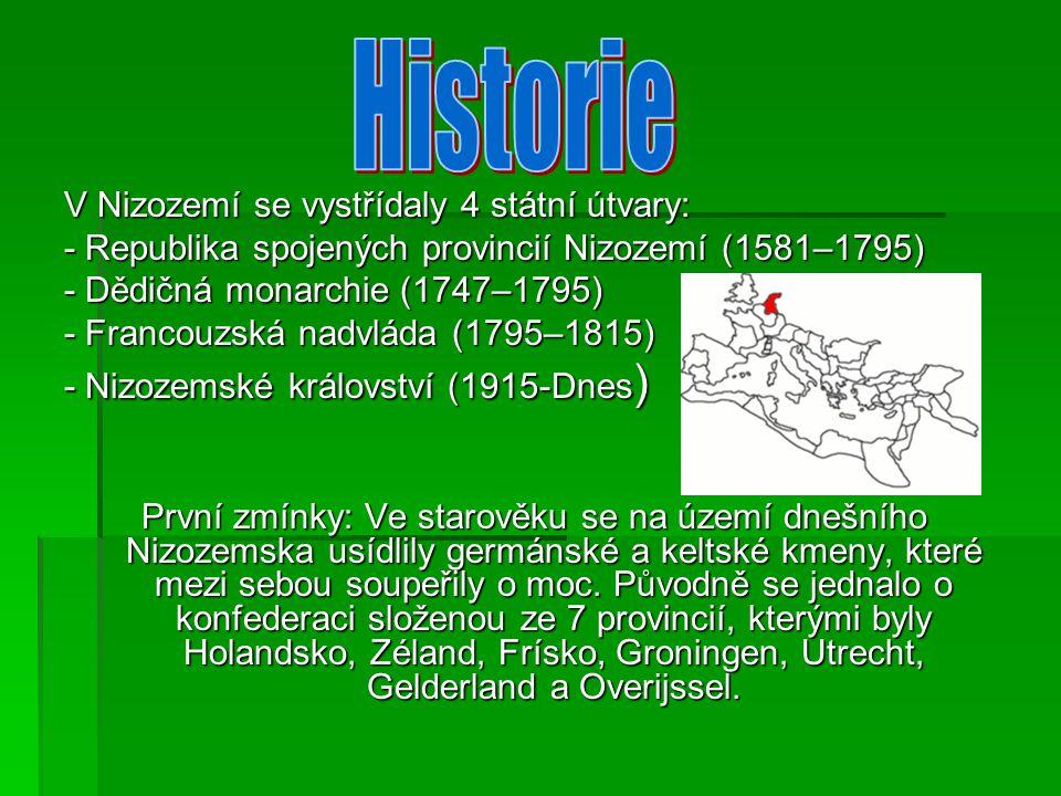 V Nizozemí se vystřídaly 4 státní útvary: - Republika spojených provincií Nizozemí (1581–1795) - Dědičná monarchie (1747–1795) - Francouzská nadvláda (1795–1815) - Nizozemské království (1915-Dnes) První zmínky: Ve starověku se na území dnešního Nizozemska usídlily germánské a keltské kmeny, které mezi sebou soupeřily o moc.
