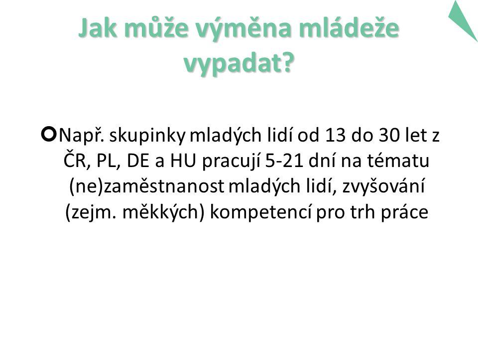 Jak může výměna mládeže vypadat? Např. skupinky mladých lidí od 13 do 30 let z ČR, PL, DE a HU pracují 5-21 dní na tématu (ne)zaměstnanost mladých lid