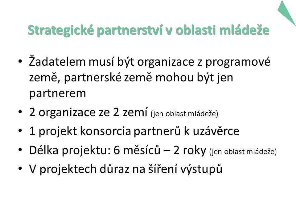 Strategické partnerství v oblasti mládeže Žadatelem musí být organizace z programové země, partnerské země mohou být jen partnerem 2 organizace ze 2 zemí (jen oblast mládeže) 1 projekt konsorcia partnerů k uzávěrce Délka projektu: 6 měsíců – 2 roky (jen oblast mládeže) V projektech důraz na šíření výstupů 16