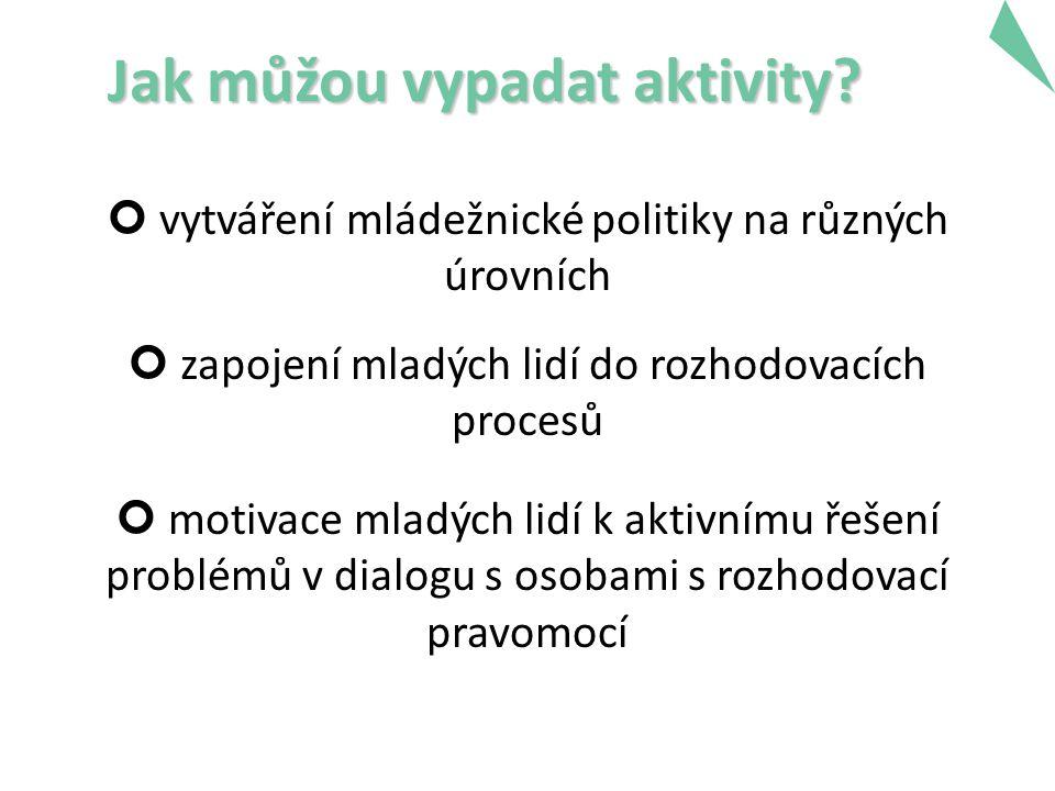 Jak můžou vypadat aktivity? vytváření mládežnické politiky na různých úrovních zapojení mladých lidí do rozhodovacích procesů motivace mladých lidí k