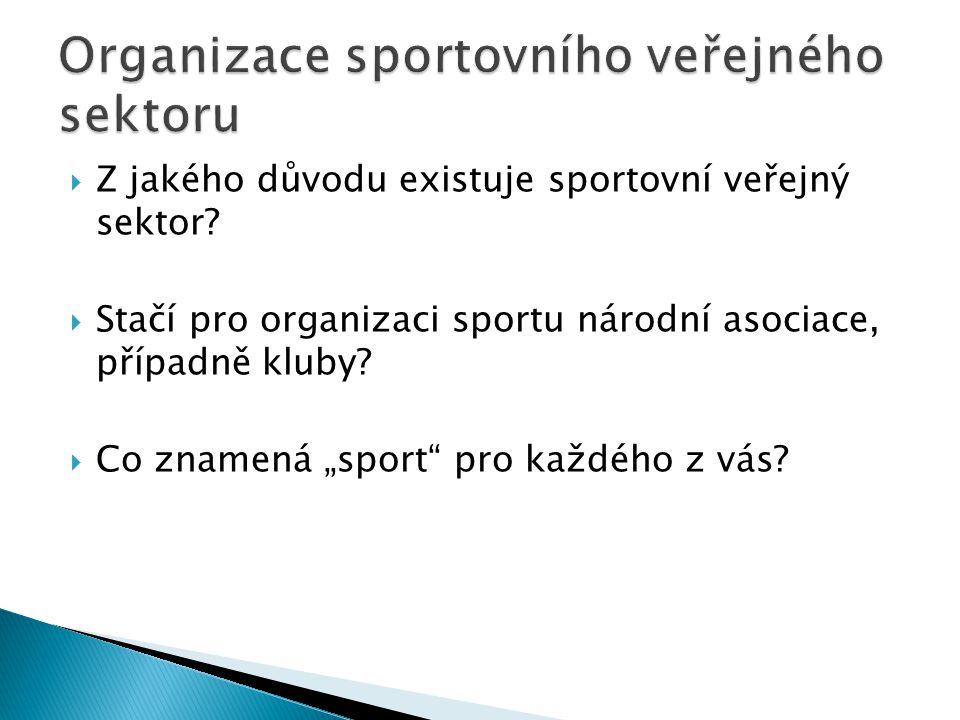 """ Z jakého důvodu existuje sportovní veřejný sektor?  Stačí pro organizaci sportu národní asociace, případně kluby?  Co znamená """"sport"""" pro každého"""