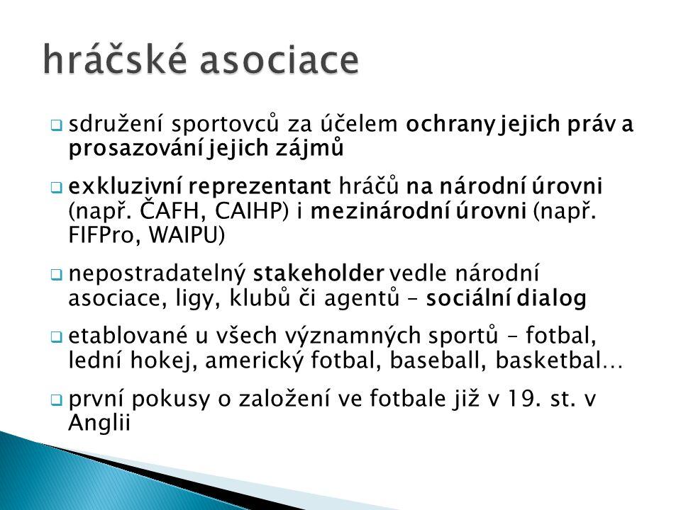  sdružení sportovců za účelem ochrany jejich práv a prosazování jejich zájmů  exkluzivní reprezentant hráčů na národní úrovni (např. ČAFH, CAIHP) i