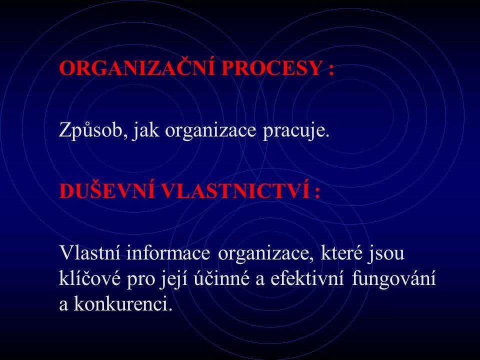 ORGANIZAČNÍ PROCESY : Způsob, jak organizace pracuje. DUŠEVNÍ VLASTNICTVÍ : Vlastní informace organizace, které jsou klíčové pro její účinné a efektiv