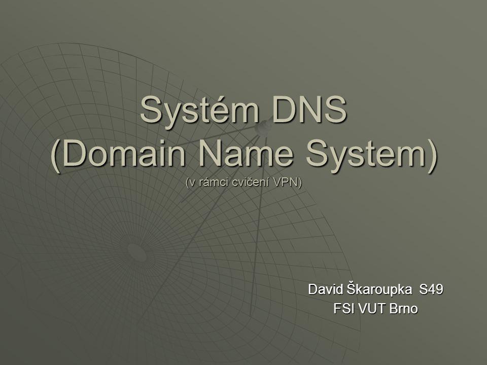 David Škaroupka S49 FSI VUT Brno Systém DNS (Domain Name System) (v rámci cvičení VPN)