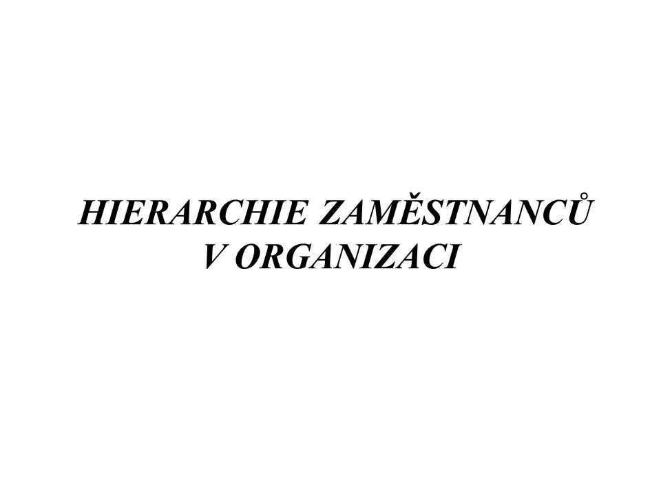 HIERARCHIE ZAMĚSTNANCŮ V ORGANIZACI