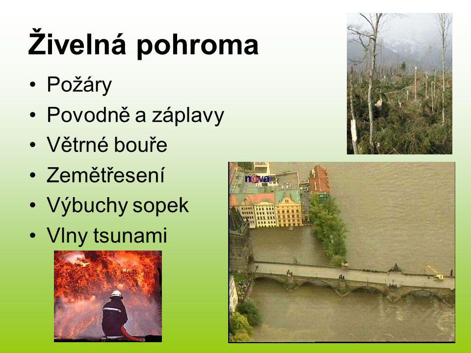 Živelná pohroma Požáry Povodně a záplavy Větrné bouře Zemětřesení Výbuchy sopek Vlny tsunami