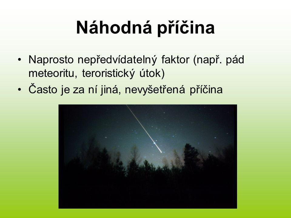 Náhodná příčina Naprosto nepředvídatelný faktor (např. pád meteoritu, teroristický útok) Často je za ní jiná, nevyšetřená příčina