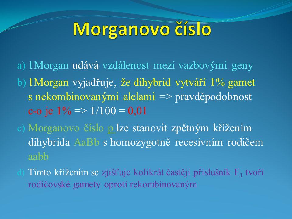 a) 1Morgan udává vzdálenost mezi vazbovými geny b) 1Morgan vyjadřuje, že dihybrid vytváří 1% gamet s nekombinovanými alelami => pravděpodobnost c-o je 1% => 1/100 = 0,01 c) Morganovo číslo p lze stanovit zpětným křížením dihybrida AaBb s homozygotně recesivním rodičem aabb d) Tímto křížením se zjišťuje kolikrát častěji příslušník F 1 tvoří rodičovské gamety oproti rekombinovaným