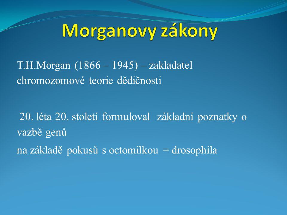 T.H.Morgan (1866 – 1945) – zakladatel chromozomové teorie dědičnosti 20.
