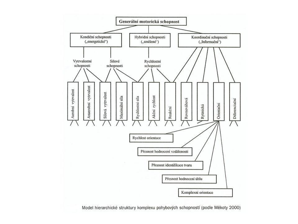 Kondiční schopnosti Vytrvalostní schopnosti Silové schopnosti Rychlostní schopnosti - částečně