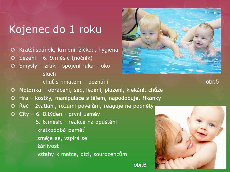 Kojenec do 1 roku  Kratší spánek, krmení lžičkou, hygiena  Sezení – 6.-9.měsíc (nočník)  Smysly – zrak – spojení ruka – oko sluch chuť s hmatem – p