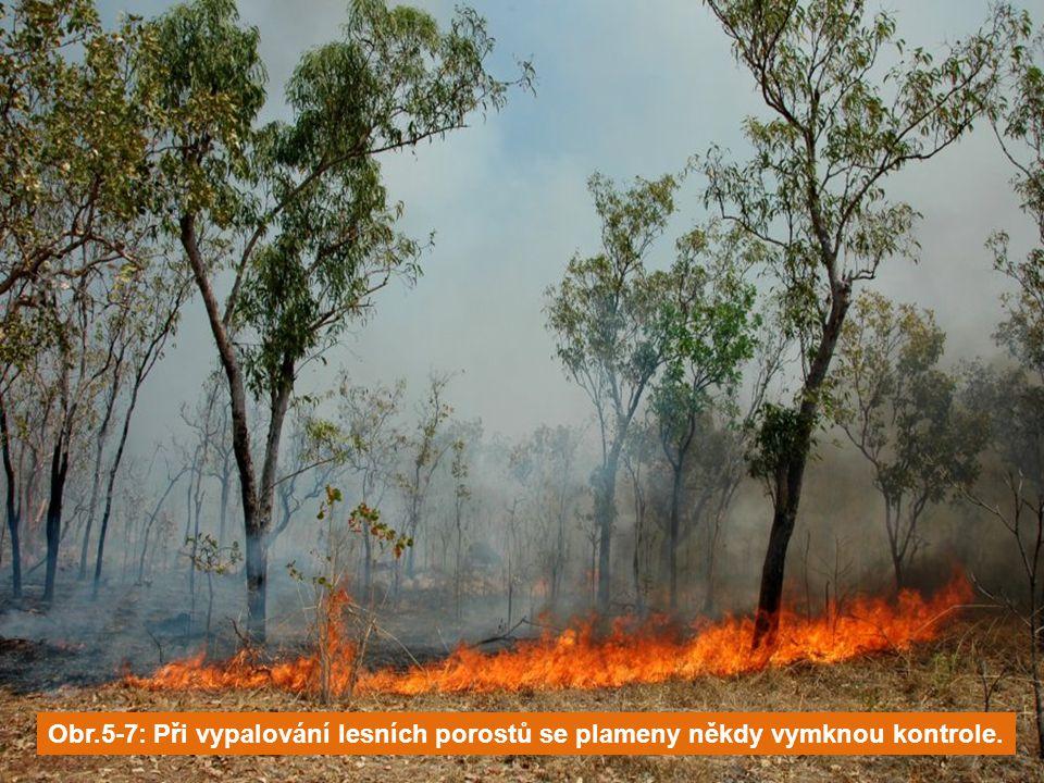 Obr.5-7: Při vypalování lesních porostů se plameny někdy vymknou kontrole.