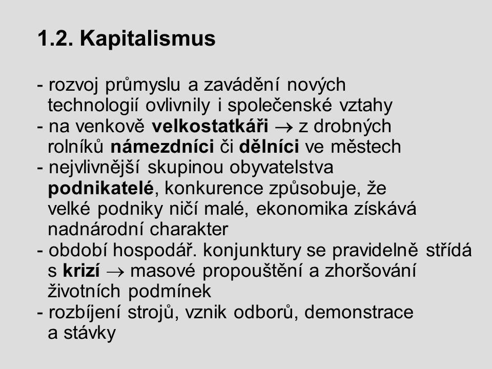 - sociálně demokratické strany jednotlivých zemí se sdružují  I.