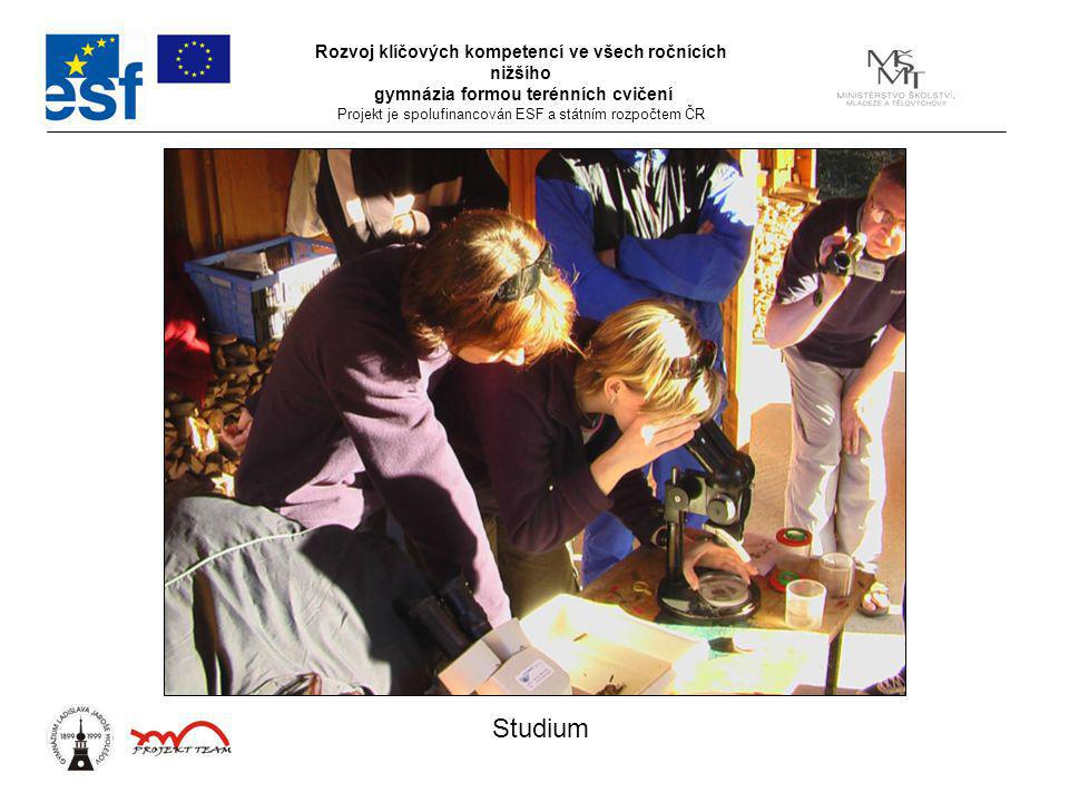 Rozvoj klíčových kompetencí ve všech ročnících nižšího gymnázia formou terénních cvičení Projekt je spolufinancován ESF a státním rozpočtem ČR Studium