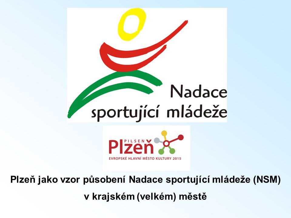 Plzeň jako vzor působení Nadace sportující mládeže (NSM) v krajském (velkém) městě