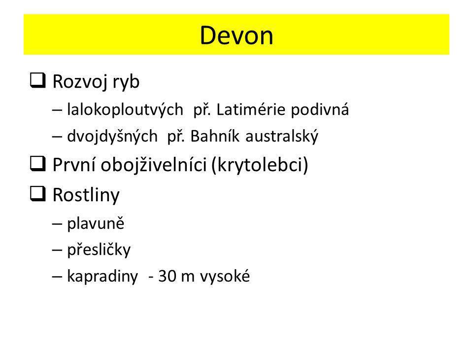 Devon  Rozvoj ryb – lalokoploutvých př.Latimérie podivná – dvojdyšných př.