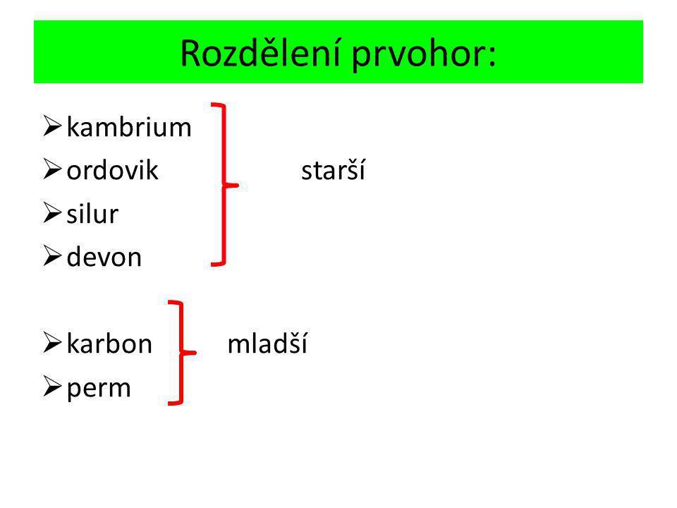 nd01.jxs.cz/610/931/a5ce8561d9_17431341_o2.jpg Krytolebec