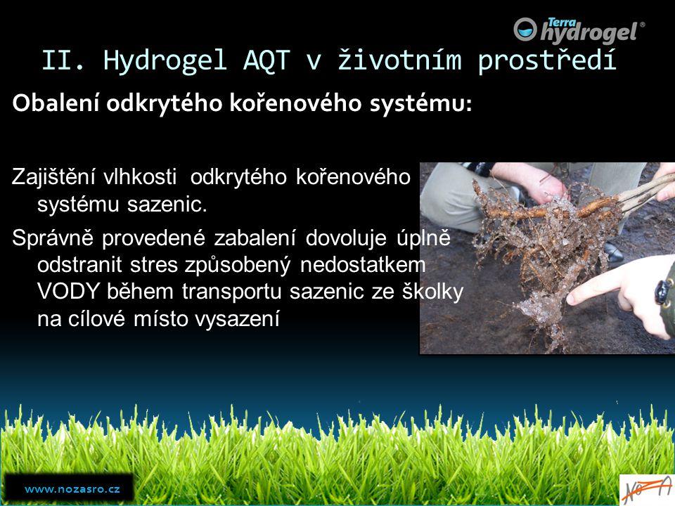 II. Hydrogel AQT v životním prostředí Obalení odkrytého kořenového systému: Zajištění vlhkosti odkrytého kořenového systému sazenic. Správně provedené