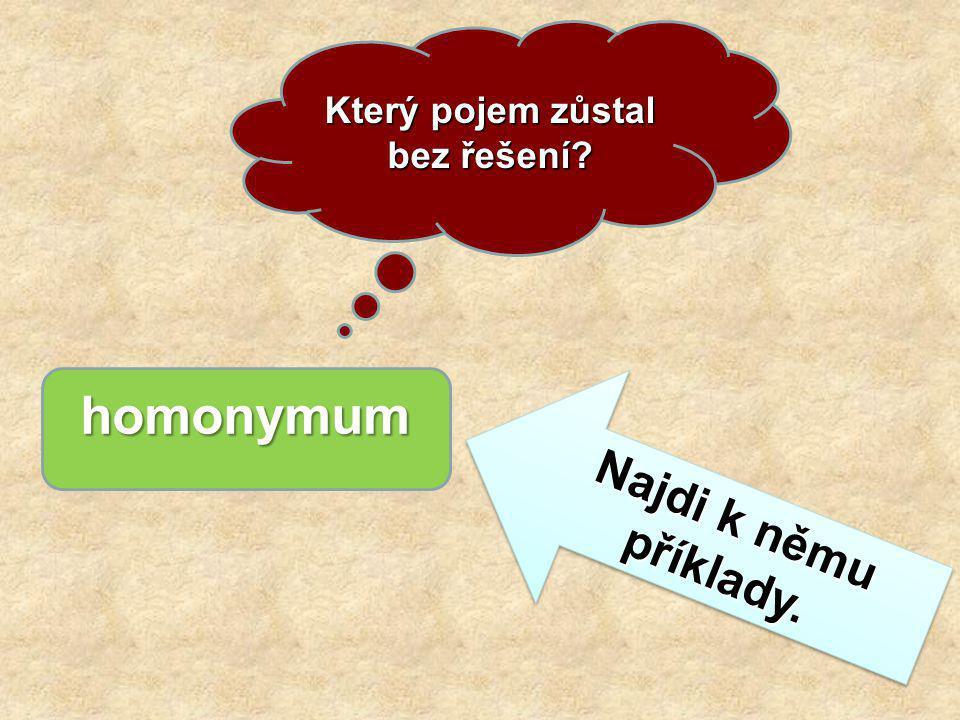 Který pojem zůstal bez řešení.homonymum Najdi k němu příklady.