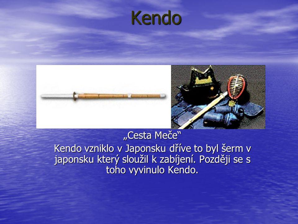 """Kendo """"Cesta Meče"""" Kendo vzniklo v Japonsku dříve to byl šerm v japonsku který sloužil k zabíjení. Později se s toho vyvinulo Kendo."""