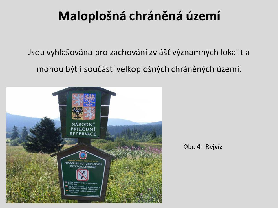 Maloplošná chráněná území Jsou vyhlašována pro zachování zvlášť významných lokalit a mohou být i součástí velkoplošných chráněných území. Obr. 4 Rejví
