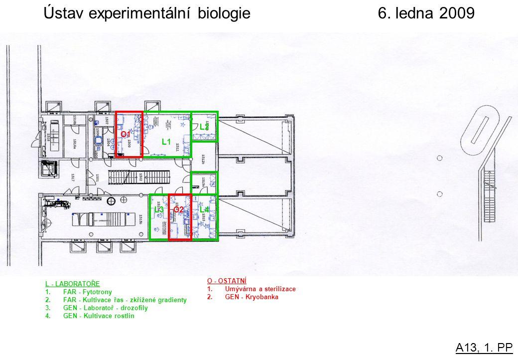 A13, 1. PP Ústav experimentální biologie6.