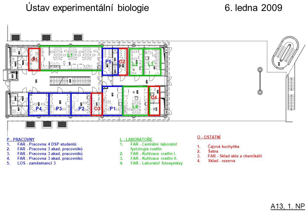 A13, 1. NP Ústav experimentální biologie 6.