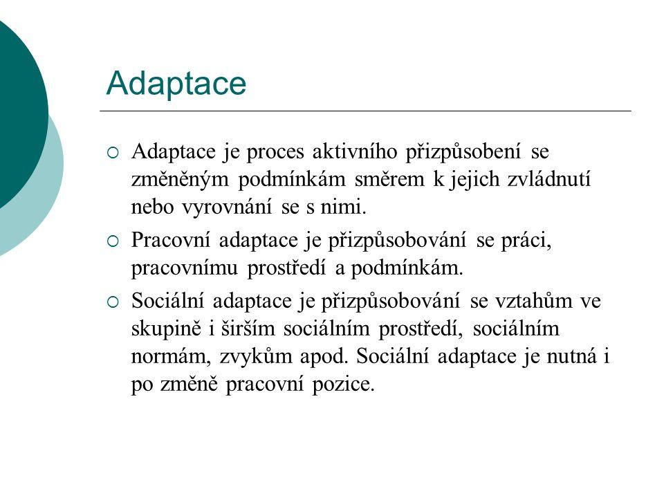 Osobní předpoklady adaptace  Odborná připravenost  Výkonová připravenost  Osobní vyhraněnost  Hodnotová orientace  Motivace  Postojové zaměření