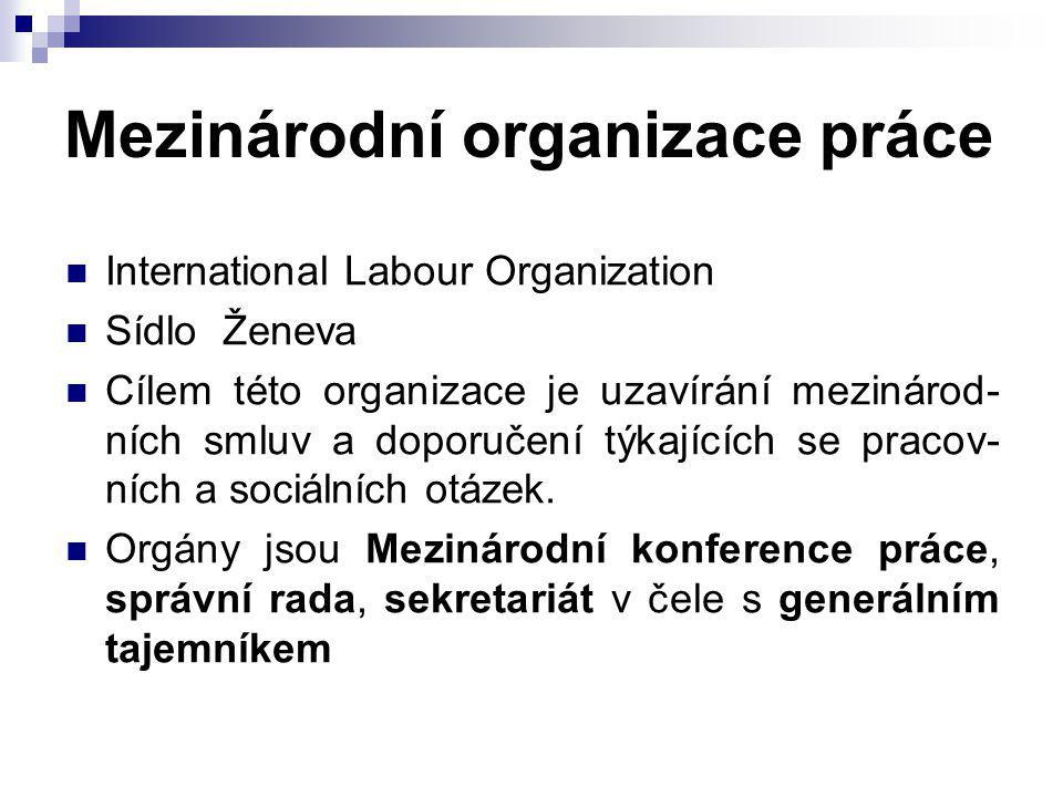 Mezinárodní organizace práce International Labour Organization Sídlo Ženeva Cílem této organizace je uzavírání mezinárod- ních smluv a doporučení týka