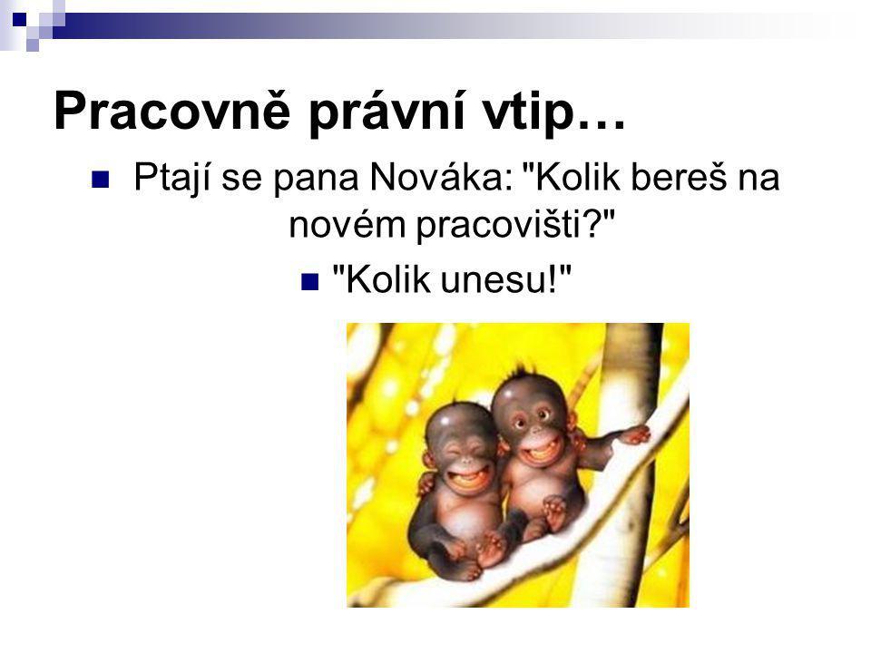 Pracovně právní vtip… Ptají se pana Nováka: