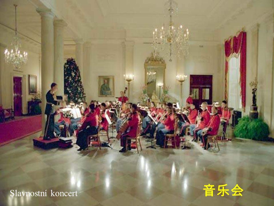 Slavnostní koncert 音乐会
