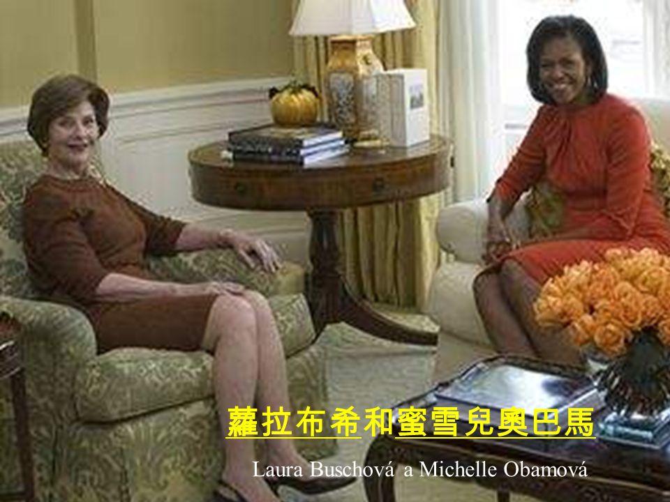 George W. Busche a Barack Obama 喬治 W 布希和 貝拉克奧巴馬