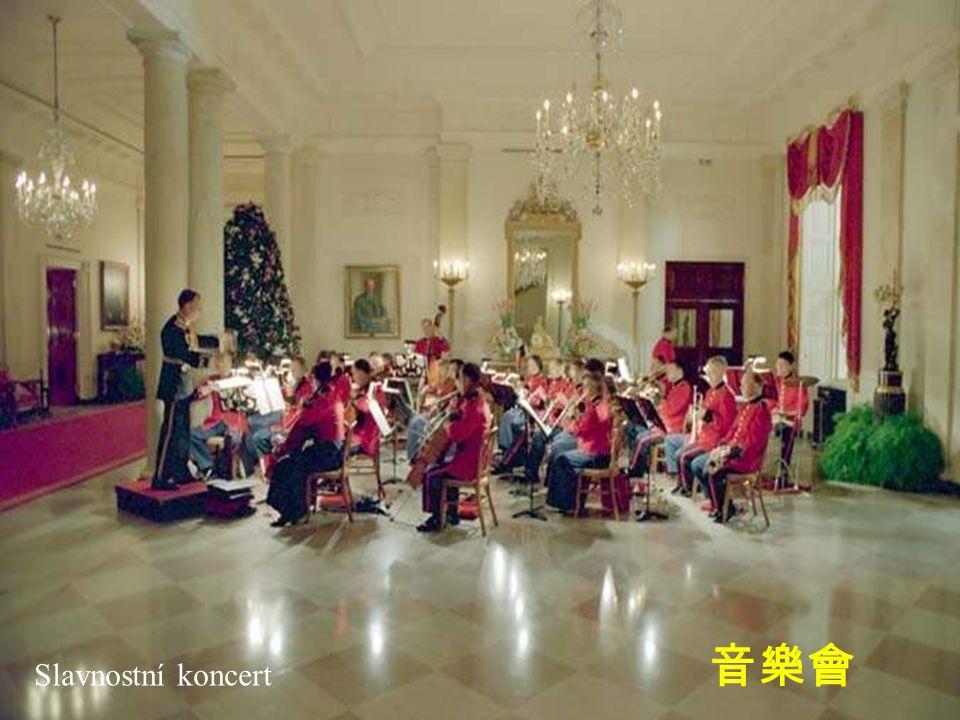 Slavnostní koncert 音樂會