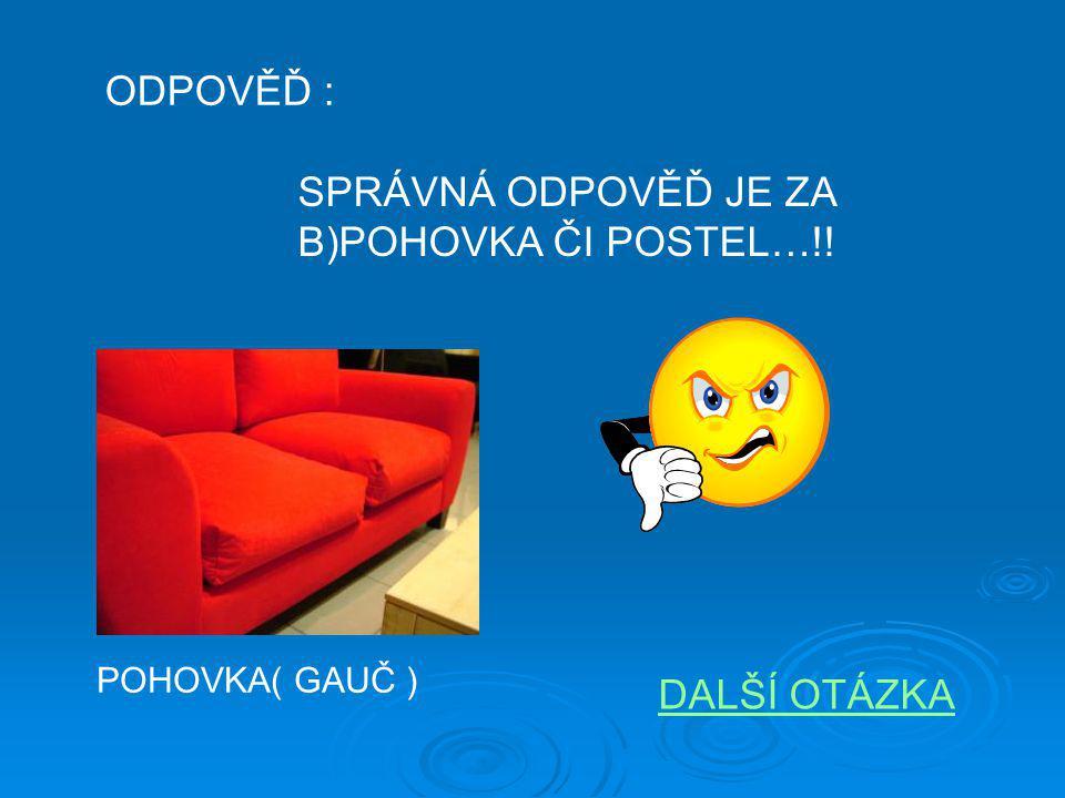ODPOVĚĎ : RAKOUSKO MÁ 7 SOUSEDŮ: ČESKO, ITÁLII, SLOVENSKO, ŠVÝCARSKO, NĚMECKO, MAĎARSKO, SLOVINSKO.!!.