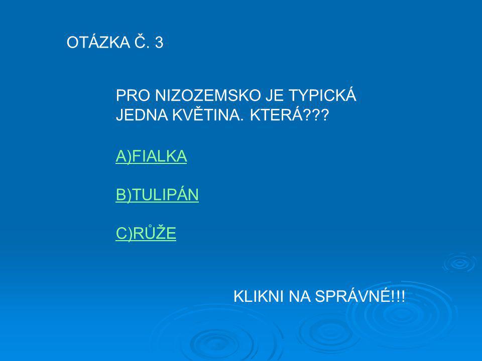 OTÁZKA Č. 3 PRO NIZOZEMSKO JE TYPICKÁ JEDNA KVĚTINA. KTERÁ??? A)FIALKA B)TULIPÁN C)RŮŽE KLIKNI NA SPRÁVNÉ!!!