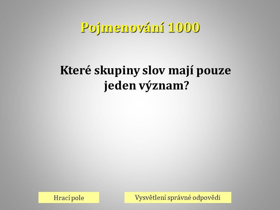 Pojmenování 1000 Hrací pole Vysvětlení správné odpovědi Které skupiny slov mají pouze jeden význam?