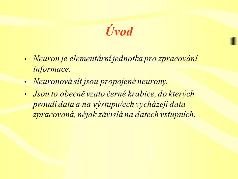 Úvod Neuron je elementární jednotka pro zpracování informace.