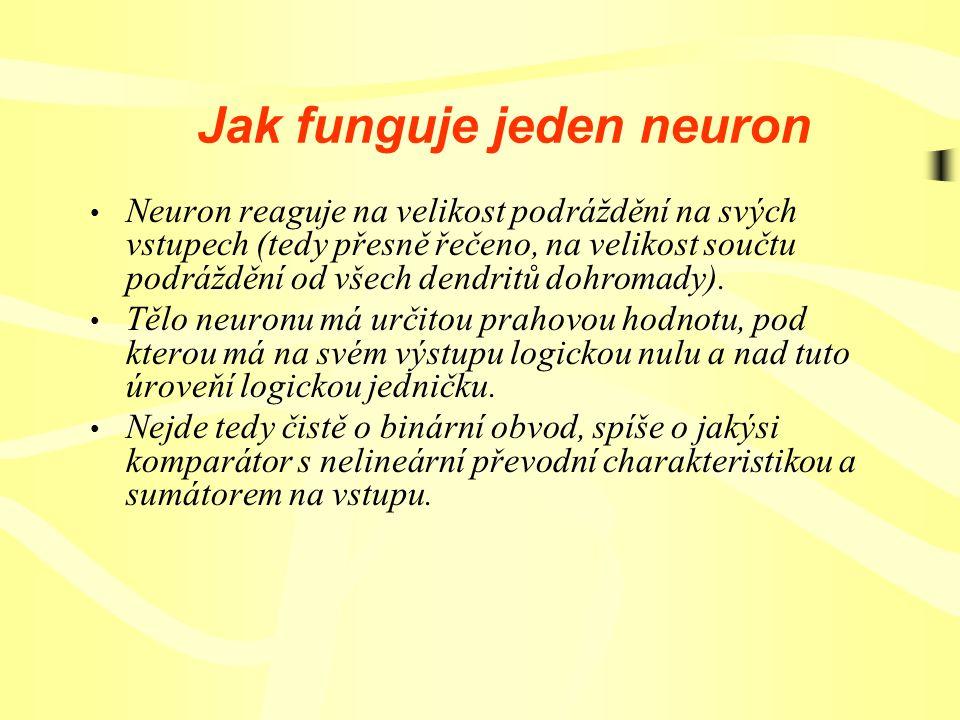 Jak funguje jeden neuron Neuron reaguje na velikost podráždění na svých vstupech (tedy přesně řečeno, na velikost součtu podráždění od všech dendritů dohromady).
