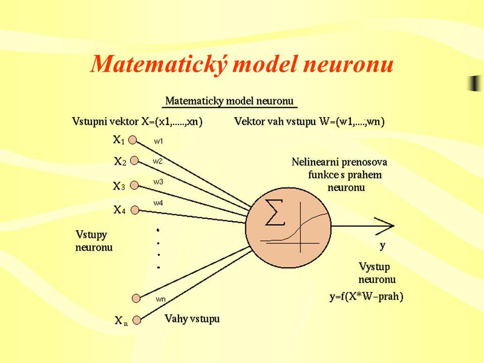 Dlouhodobá paměť Je realizována zapojením obvodu , tedy tím, jak jsou propojeny jednotlivé neurony mezi sebou a jak jsou nastaveny synapse.