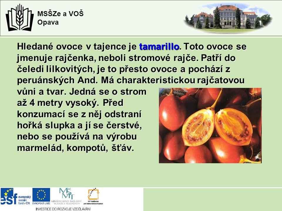 MSŠZe a VOŠ Opava Hledané ovoce v tajence je tamarillo. Toto ovoce se jmenuje rajčenka, neboli stromové rajče. Patří do čeledi lilkovitých, je to přes
