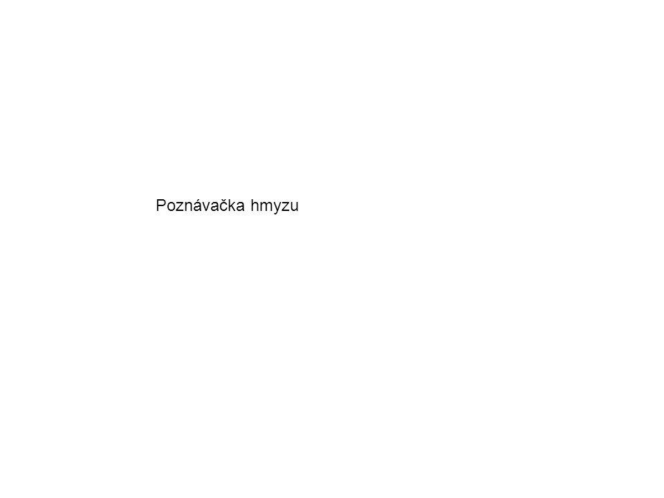 Zlatoočka obecná Veš muňka Kobylka zelená Ruměnice pospolná 1 2 3 4