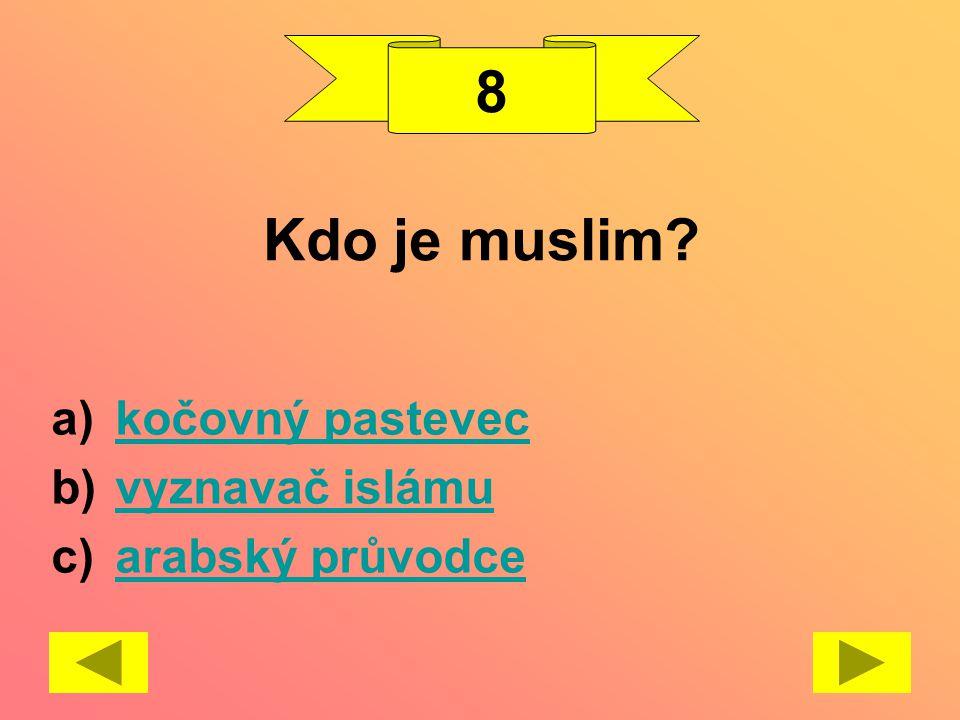 Kdo je muslim? a)kočovný pasteveckočovný pastevec b)vyznavač islámuvyznavač islámu c)arabský průvodcearabský průvodce 8