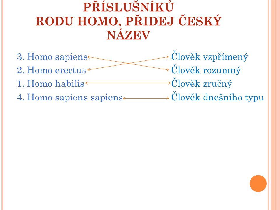 URČI SPRÁVNÉ POŘADÍ PŘÍSLUŠNÍKŮ RODU HOMO, PŘIDEJ ČESKÝ NÁZEV 3. Homo sapiens 2. Homo erectus 1. Homo habilis 4. Homo sapiens sapiens Člověk vzpřímený