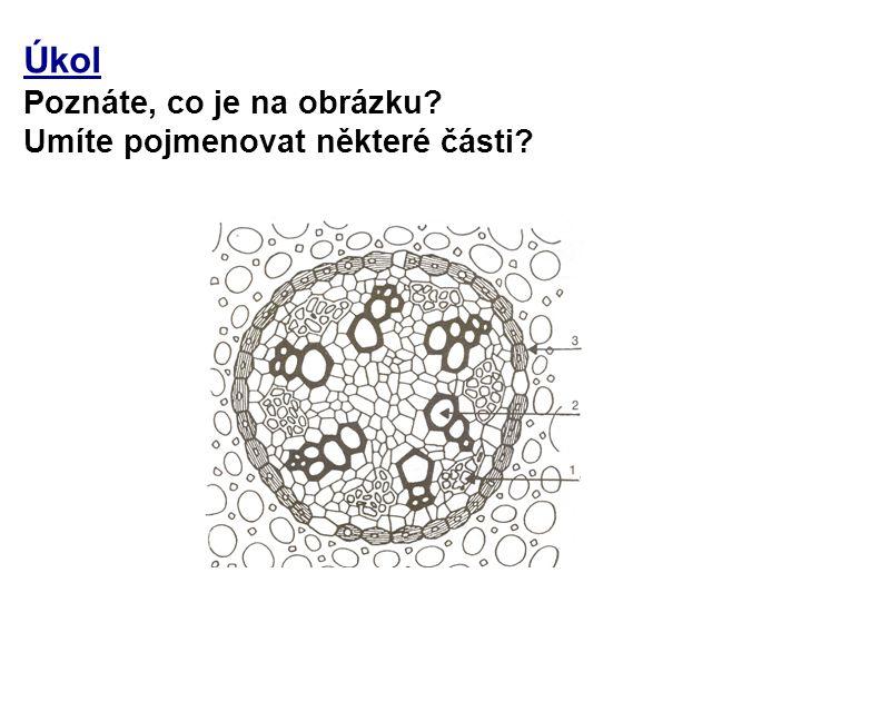 Úkol Poznáte, co je na obrázku? Umíte pojmenovat některé části?